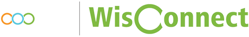Wisconsin Internship Logo
